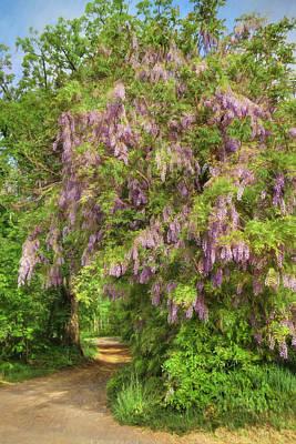 Spring Scenery Mixed Media - Wisteria Lane by Lori Deiter