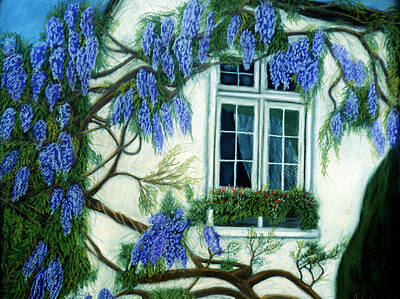 Pastel - Wisteria Window by Jan Amiss