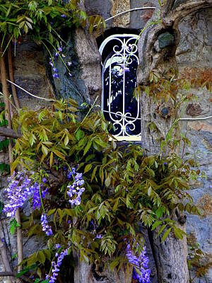 Wisteria Window Art Print