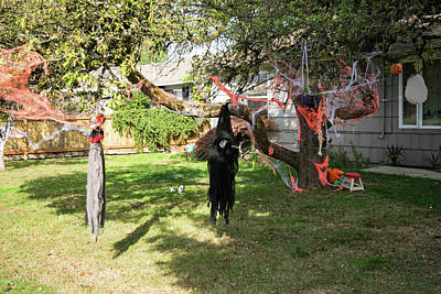 Photograph - Hanging Witch In Mt Vernon by Tom Cochran
