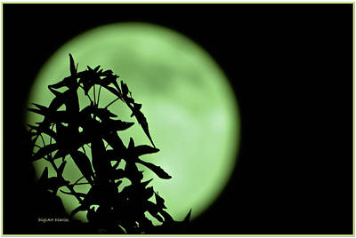 Photograph - Witching Hour by DigiArt Diaries by Vicky B Fuller