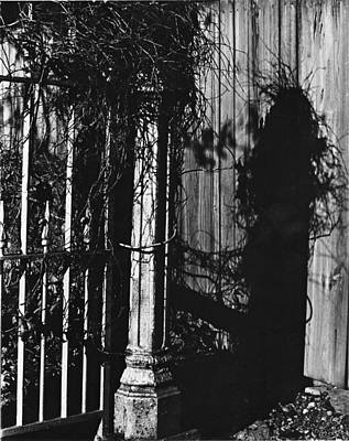 Photograph - Witch's Shadow by Kathryn Donatelli