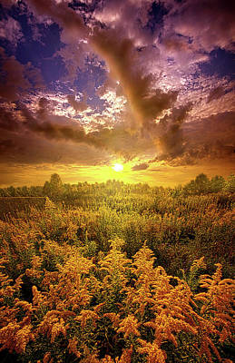 Photograph - With All Your Heart And Soul by Phil Koch