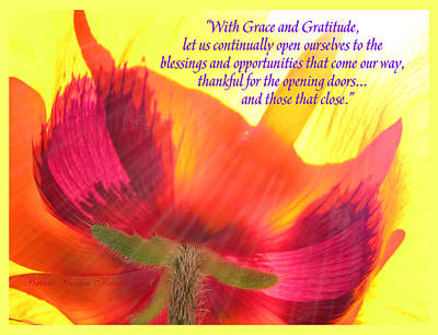 Photograph - With Grace And Gratitude - Poppy From The Garden With Text by Brooks Garten Hauschild
