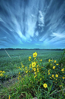 Photograph - With New Meaning by Phil Koch