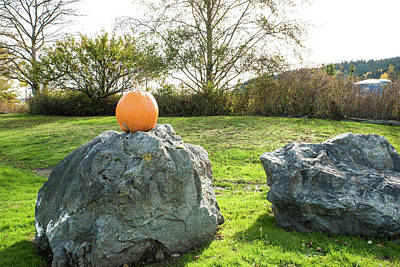 Photograph - With Or Without A Pumpkin by Tom Cochran