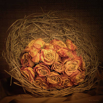 Photograph - Withered Roses by Wim Lanclus
