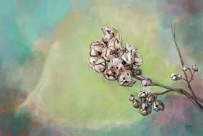 Painting - Withered Seed Head by Mandy Tabatt