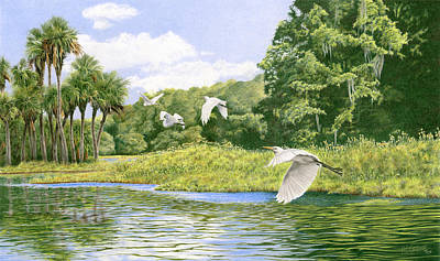 Painting - Withlacoochee Flight by Richard Devine