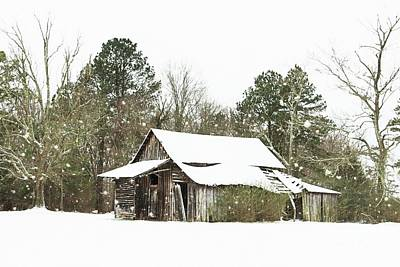 Withstood Many Winters Art Print