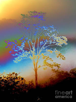 Art Print featuring the photograph Witness Tree by Jesse Ciazza