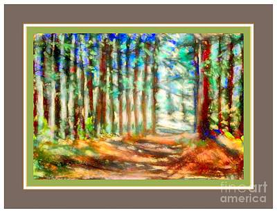 Photograph - Wooded Path With Border by Shirley Moravec