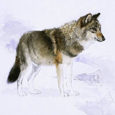 Painting - Wolf by Attila Meszlenyi
