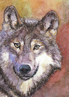 Painting - Wolf by Barry Jones