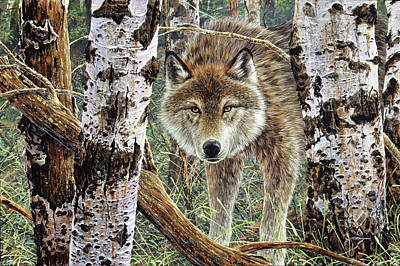 Painting - Wolf by Brian Durfee