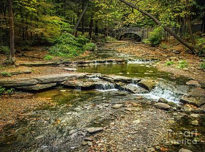 Photograph - Wolf Creek Falls In Autumn by Karen Jorstad