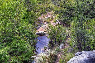 Wolf Creek From A Different Point Of View Original by Thomas  Todd