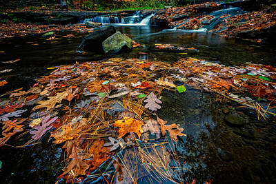 Wolf Creek Photograph - Wolf Creek by Rick Berk