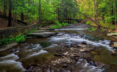 Photograph - Wolf Creek Spring by Mark Papke