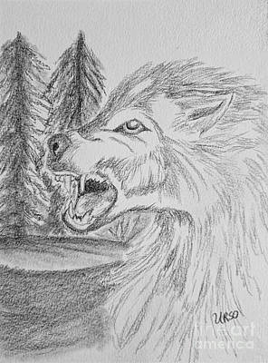 Drawing - Wolf Drawing 17-01 by Maria Urso