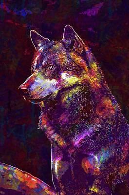 Digital Art - Wolf Face Fur Close Wild Animal  by PixBreak Art