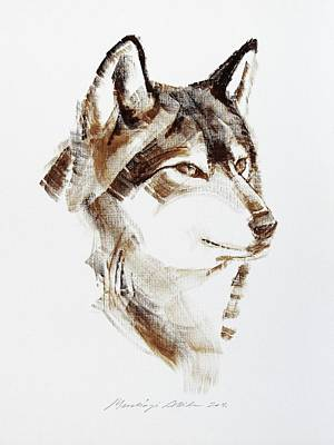Painting -  Wolf Head Brush Drawing by Attila Meszlenyi