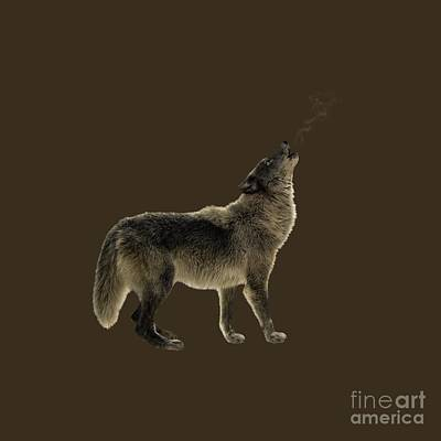 Mammals Photograph - Wolf Howling by Wildlife Fine Art