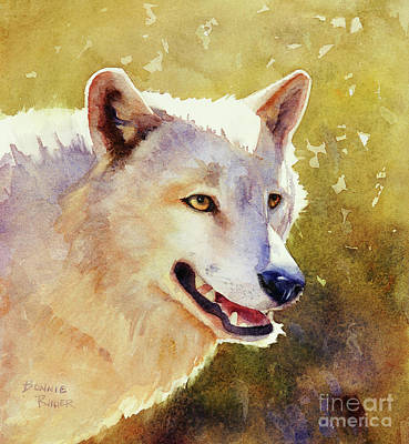 Painting - Wolf In Morning Light by Bonnie Rinier