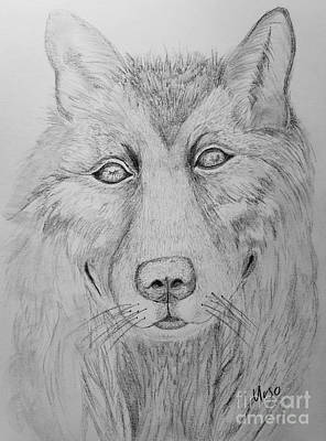 Drawing - Wolf In My Dreams by Maria Urso