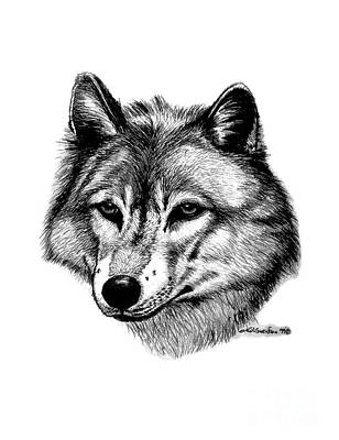 Animals Drawings - Wolf in pencil by Nick Gustafson