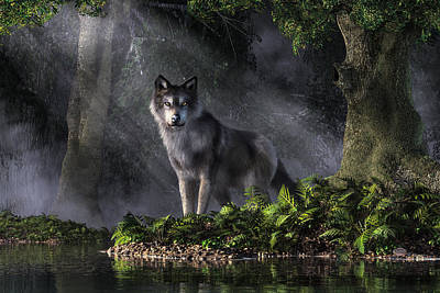 Digital Art - Wolf In The Forest by Daniel Eskridge