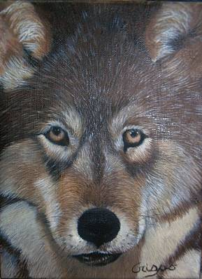 Painting - Wolf by Jean Yves Crispo