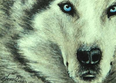 Wolf Eyes Painting - Wolf by Lena Day