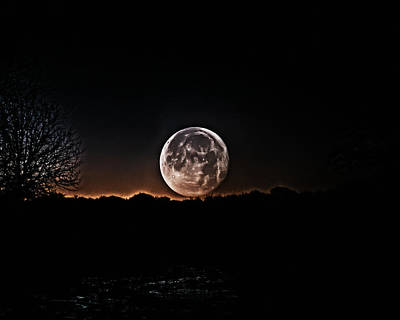 Photograph - Wolf Moon by Philip A Swiderski Jr