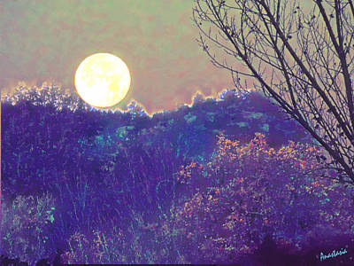 Digital Art - Wolf Moonset El Valle New Mexico by Anastasia Savage Ealy
