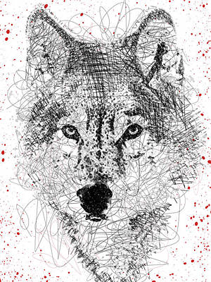 Digital Art - Wolf Sketch Pen Portrait by Mihaela Pater