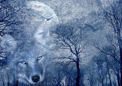 Frost Mixed Media - Wolf by Svetlana Sewell