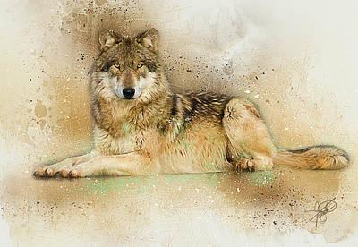 German Shephard Digital Art - Wolf by Tom Schmidt
