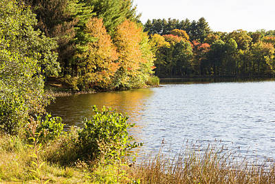Photograph - Wolfe Lake In Autumn by Fran Gallogly