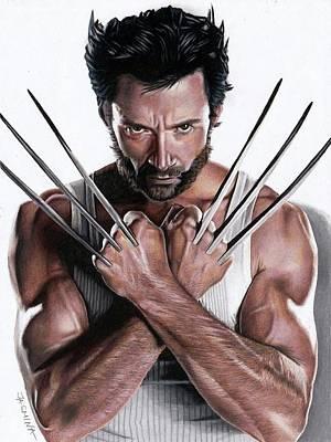 Drawing - Wolverine Fanart 2 by Jasmina Susak