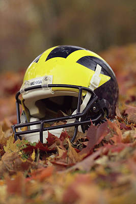 Photograph - Wolverine Helmet In October Leaves by Michigan Helmet