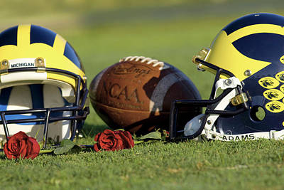 Photograph - Wolverine Helmets And Roses by Michigan Helmet