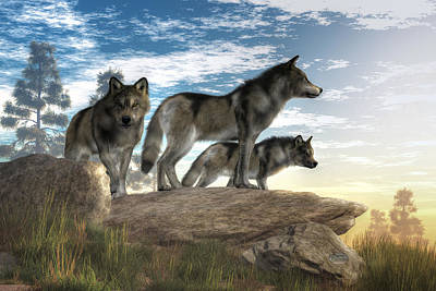 Animals Royalty-Free and Rights-Managed Images - Wolves on the Hunt by Daniel Eskridge