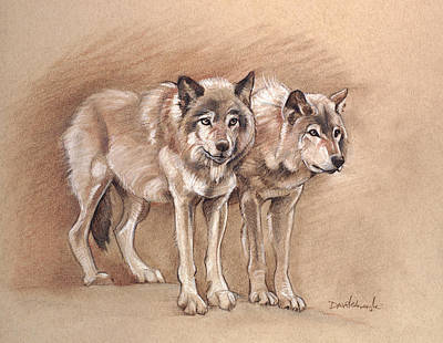 Wolves Drawing - Wolves - Wildlife Drawing by Dave Kobrenski