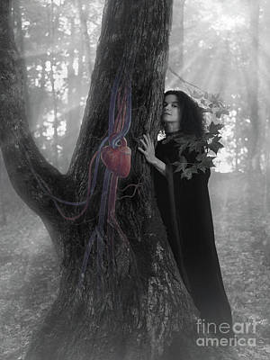 Woman Druid Listening To Heartbeat Of The Tree Black And White Art Print by Awen Fine Art Prints