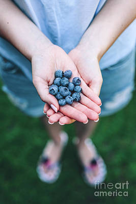 Photograph - Woman Holding Blueberries In Her Hands by Michal Bednarek