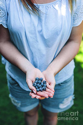 Photograph - Woman Holding Blueberry Fruits In Her Hands by Michal Bednarek