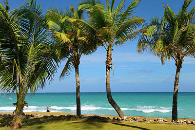 Cuba Photograph - Woman Meditating On Shore At Varadero Beach Resort Cuba With Pal by Reimar Gaertner