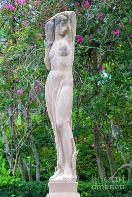 Photograph - Woman Of The Trees 1 by Kathleen K Parker