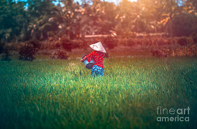 Photograph - Woman Working On Rice Plantation by Anna Om